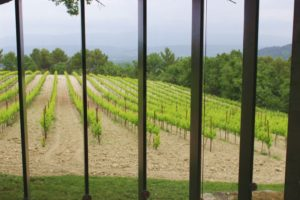 Provence-Wein und Kunst