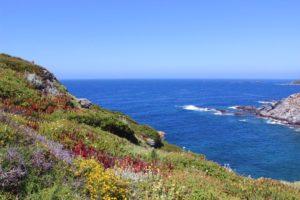 cote azur-Isle des Embiez