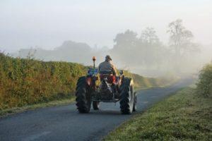 Aktives Reisen-Weinwanderungen, Burgund am Morgen