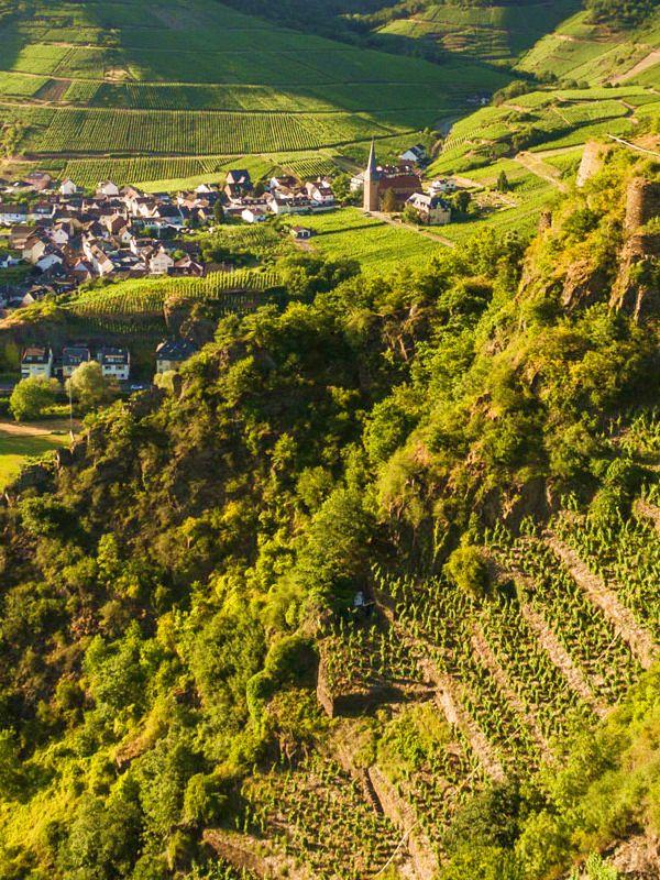 Weinwanderungen-an der Ahr