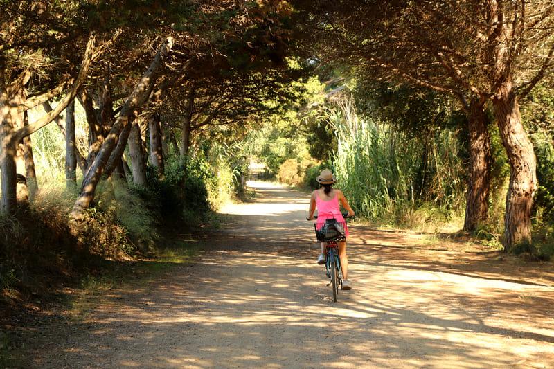 Cote d'Azur Urlaub_Porquerolles