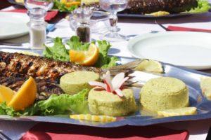 kulinarische reise-fisch des tages