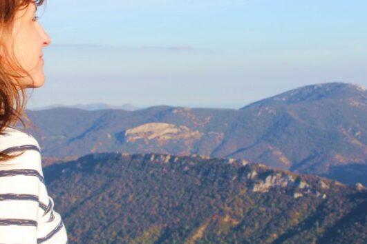 Languedoc Blick auf Queribus