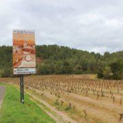 Languedoc Katharerland