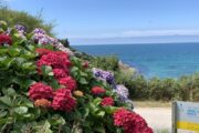 Normandie-Urlaub_Ärmelkanal